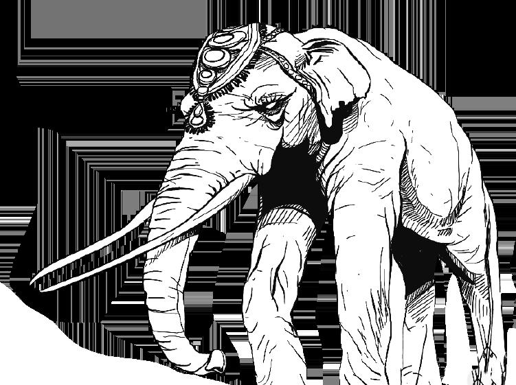 Kas thuishaven olifant
